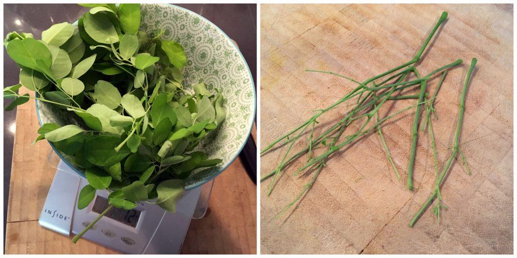 Fresh moringa oleifera - I'm in LOVE