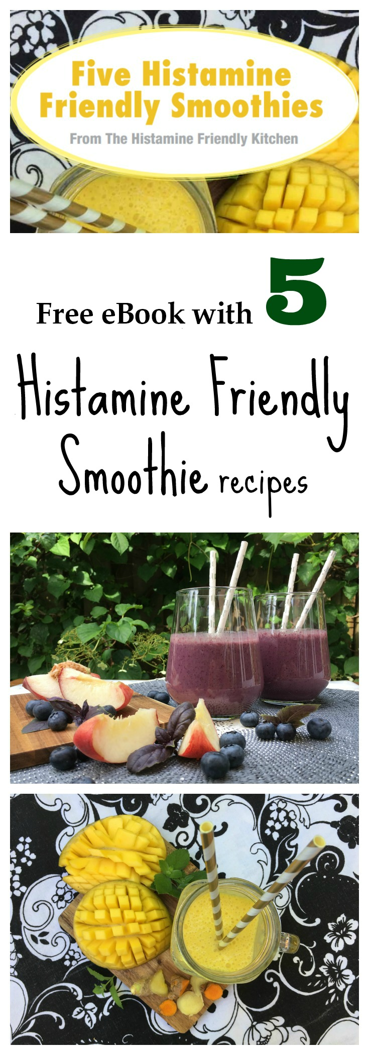 Free eBook - Five Histamine Friendly Smoothies