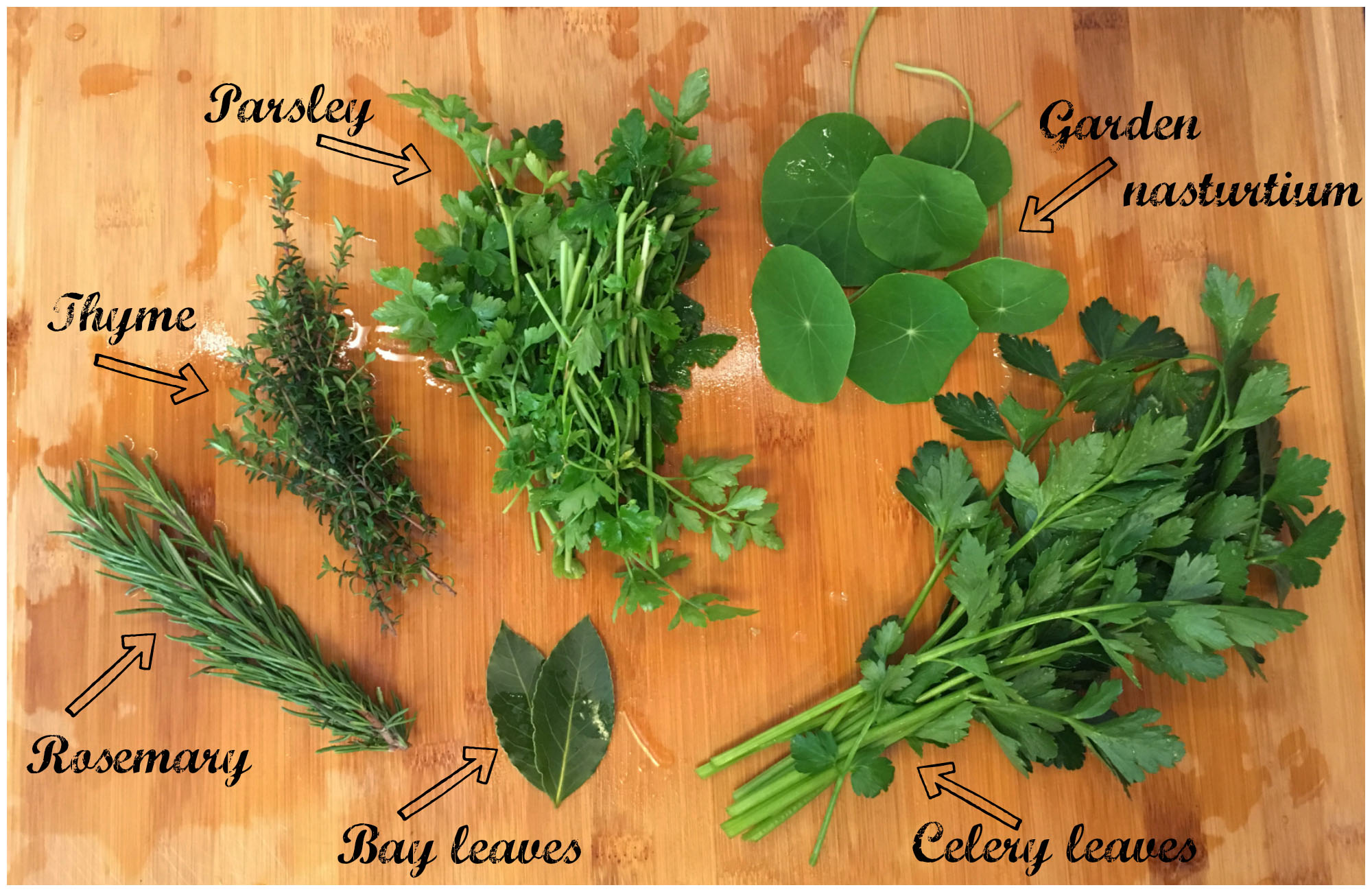 Garden Herbs for my Low Histamine Vegetable Stock Recipe