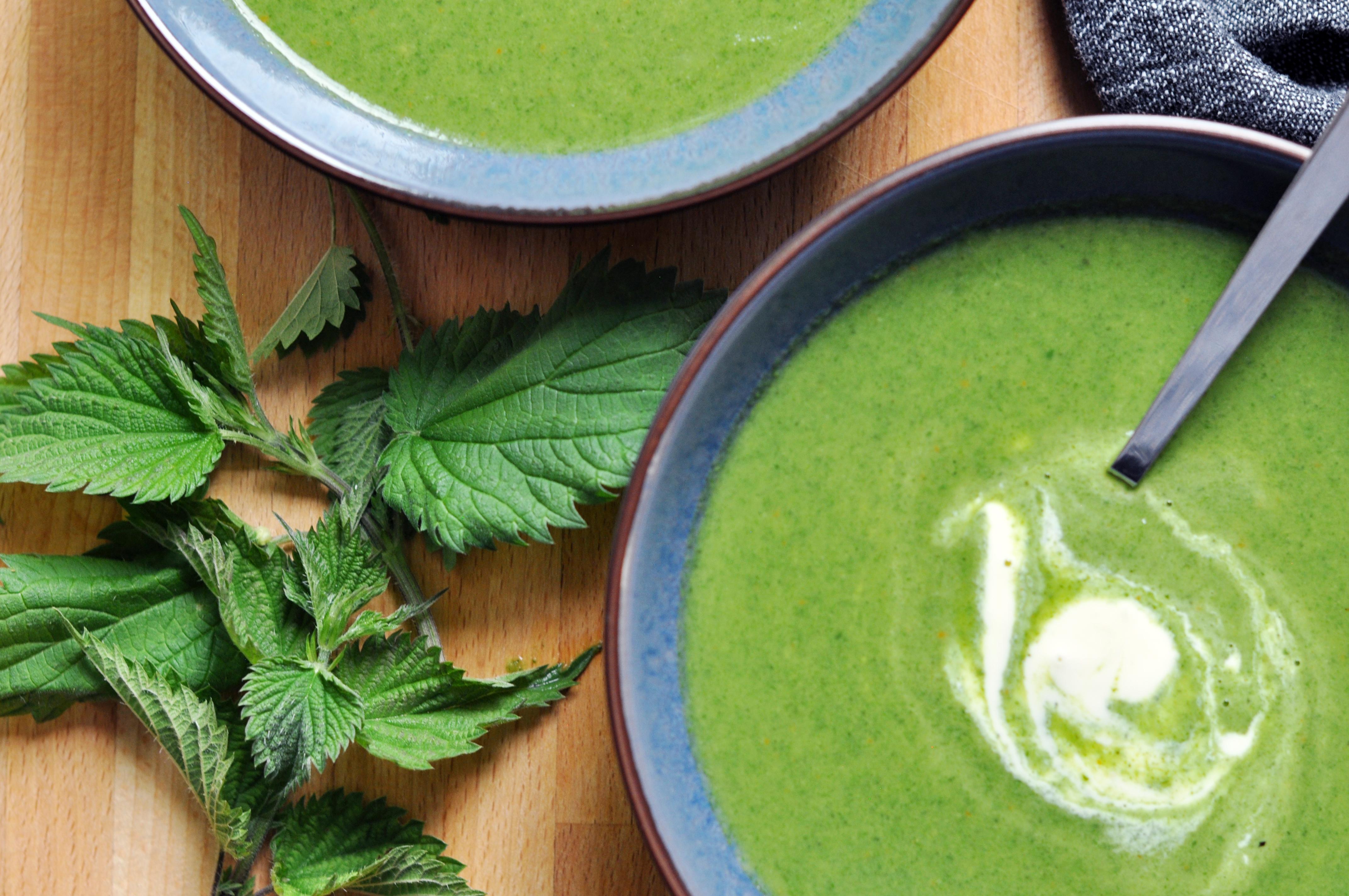 Anti-Inflammatory Nettle Soup